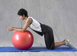 Thera-Band Pro Series Exercise Ball Prone Roll Outs