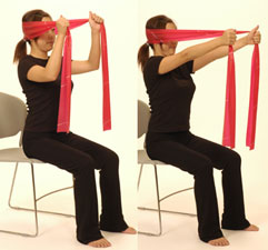 Thera-Band Cervical Extension Isometric