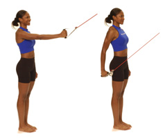 Thera-Band Shoulder Extension